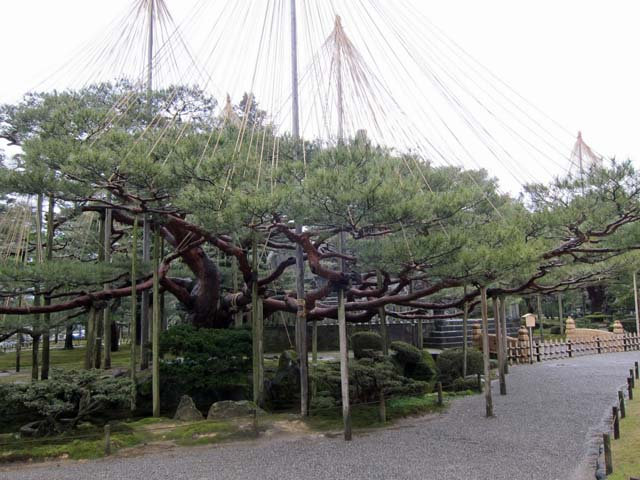 Hokuriku0611
